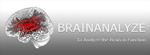 Brainanalyse